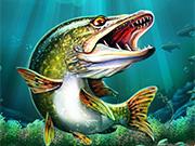 campionatul de pescuit