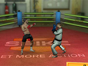 LUPTE MMA